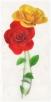 pmn_blog_rose_render