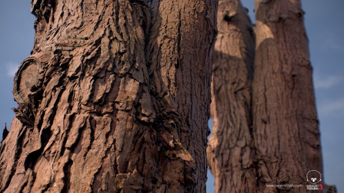 petemcnally_3Dscan_treebark02